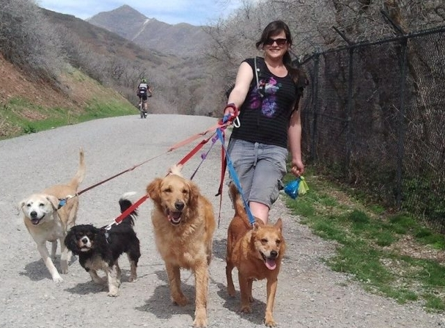 3 REASONS TO SEND YOUR DOG ON A GROUP HIKE WITH MERRY PETS - 1. Socialization. You'll acquaint your pup with other dogs from the Salt Lake City area.2. Health. Dogs require regular exercise to stay healthy and happy.3. Well-being. Dogs love nature. Let yours run around in the wide open spaces with Merry Pets!