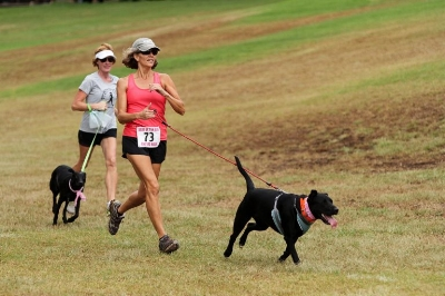 Going on a fun run with your dog can help you bond while you raise money for a good cause. Photo by Mauna Kea Realty.