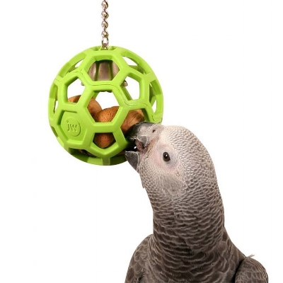 Foraging toys help pets that naturally graze keep their minds active. Photo by Northern Parrots.