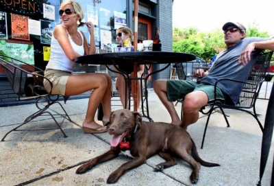 Many restaurants around Salt Lake City welcome pets, especially dogs.