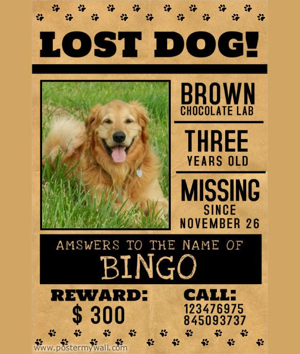 lost-pet-flyer.jpg
