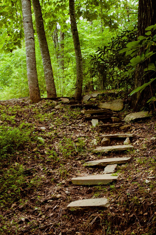 Stone path at Tao Mountain Sanctuary