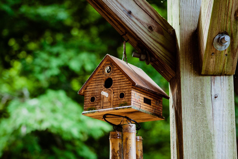 Bird house version of Tao Mountain Sanctuary