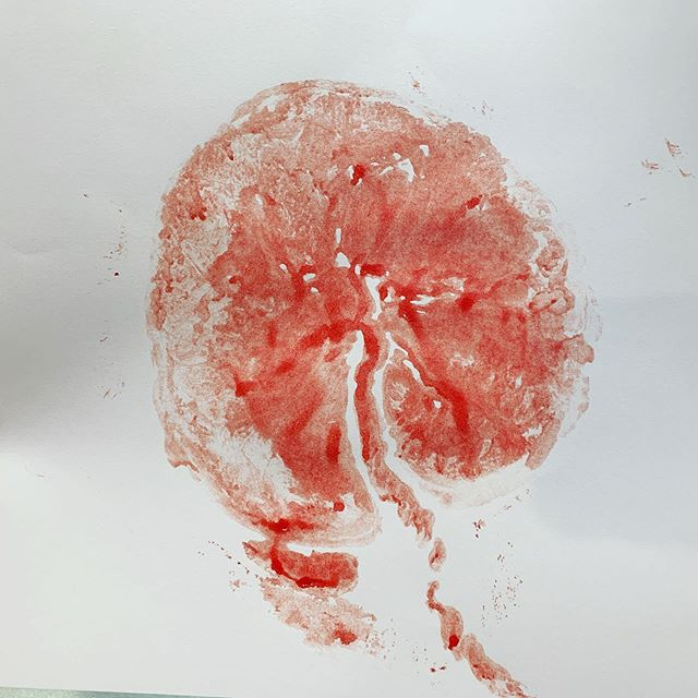 Placenta prints! #thebirthservant #duluthmnbirth #placentaprint #placentalove #studentmidwife #lotusbirth