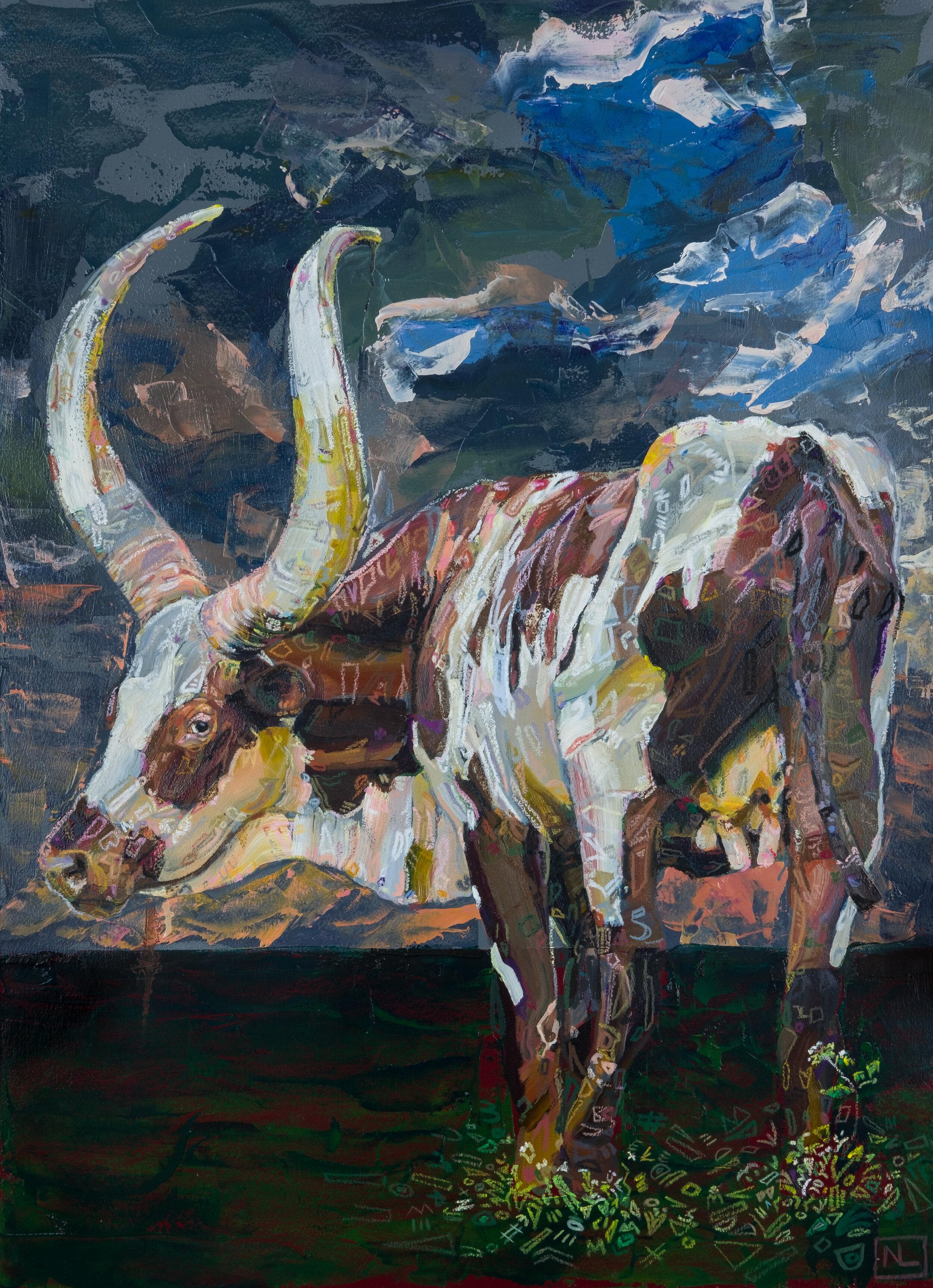 Untitled (ankole-watusi)