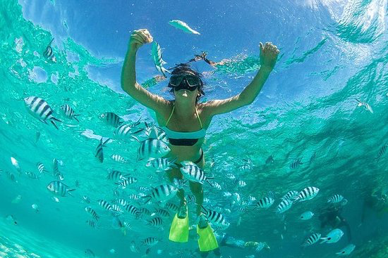 Raya Island Tour - Go swimming and snorkeling at Koh Racha Yai on this full-day tour by speedboat from Phuket. Get to the picturesque island quickly by speedboat, and have more time to enjoy the white-sand beach, warm ocean waters, and colorful marine life.
