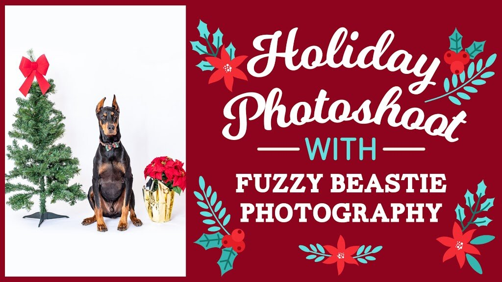HolidayPhotoshoot.jpg