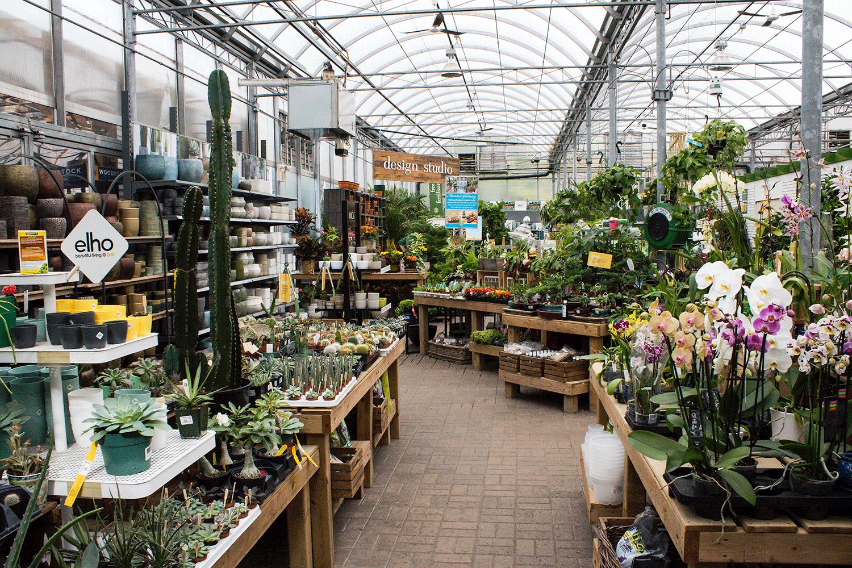 Sheridan Nurseries - Toronto