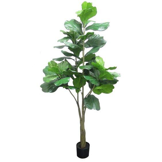 Get the look - A Modern Scaninavian Entryway - Fiddle Leaf Fig.jpg