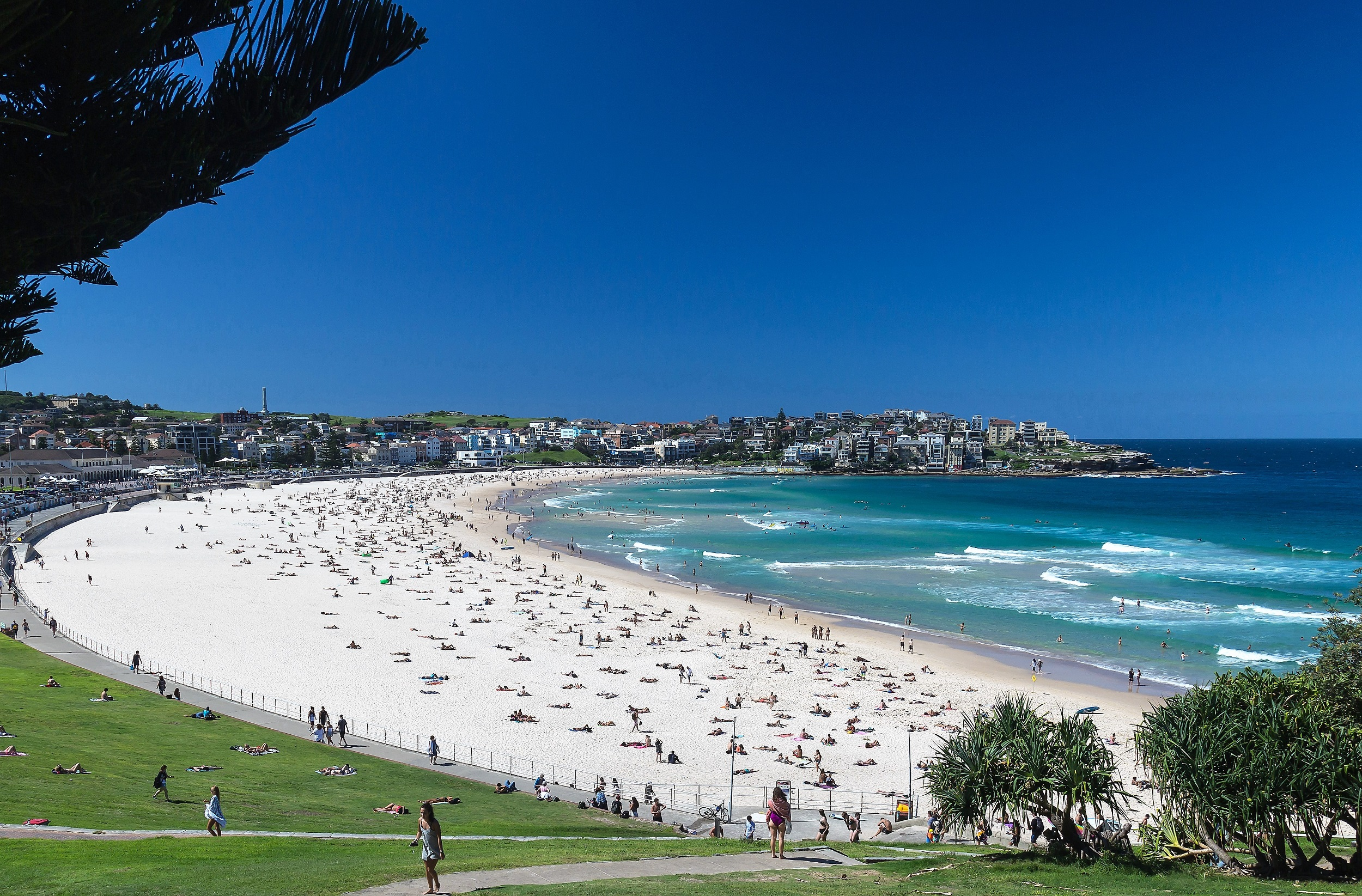 bondi beach rejigged .jpg