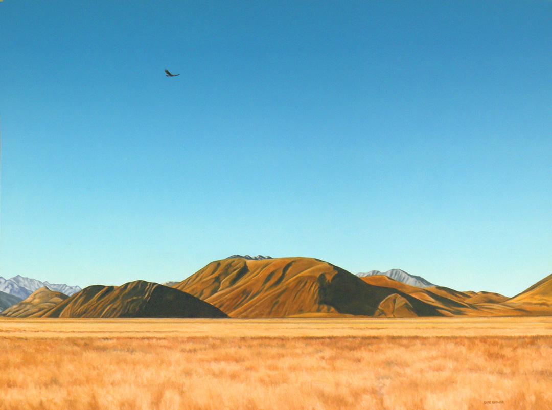 Ahuriri Valley.jpg