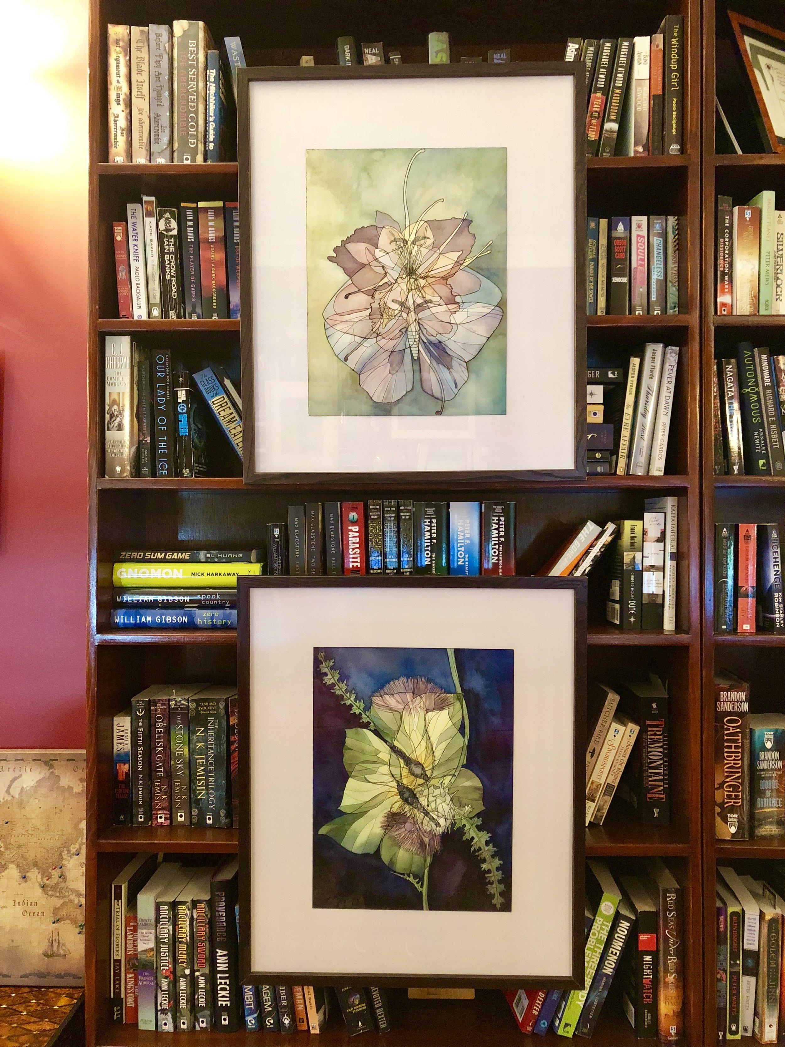 Moth X Iris X Columbine (top), Brimstone X Thistle (bottom), ink and watercolor on paper.