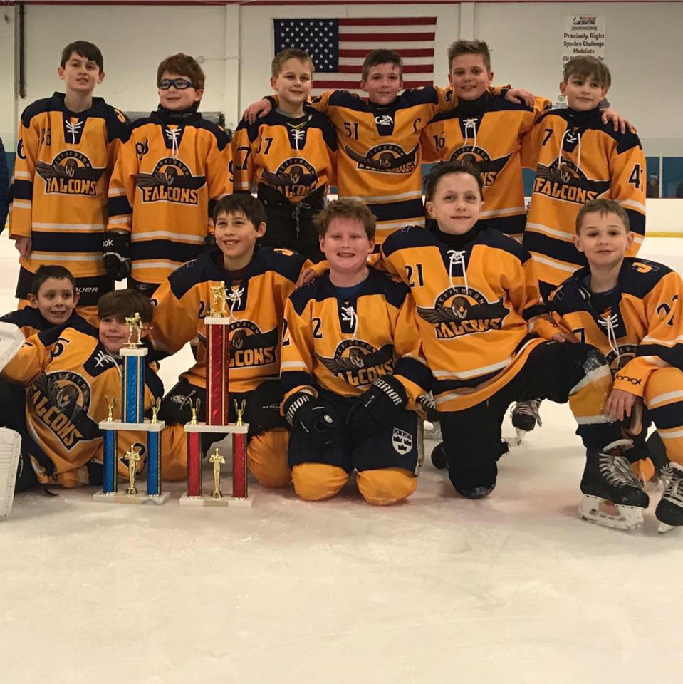 2018-2019 MCYL Squirt Champions!