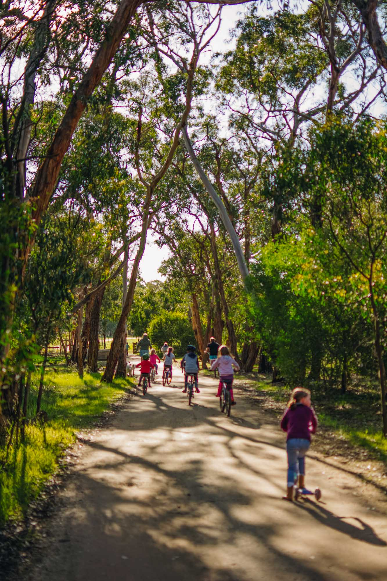 Freshwater Creek Cottages - Kids Farm Tours - Kids Parties - Surf Coast - Torquay - Geelong-48.jpg