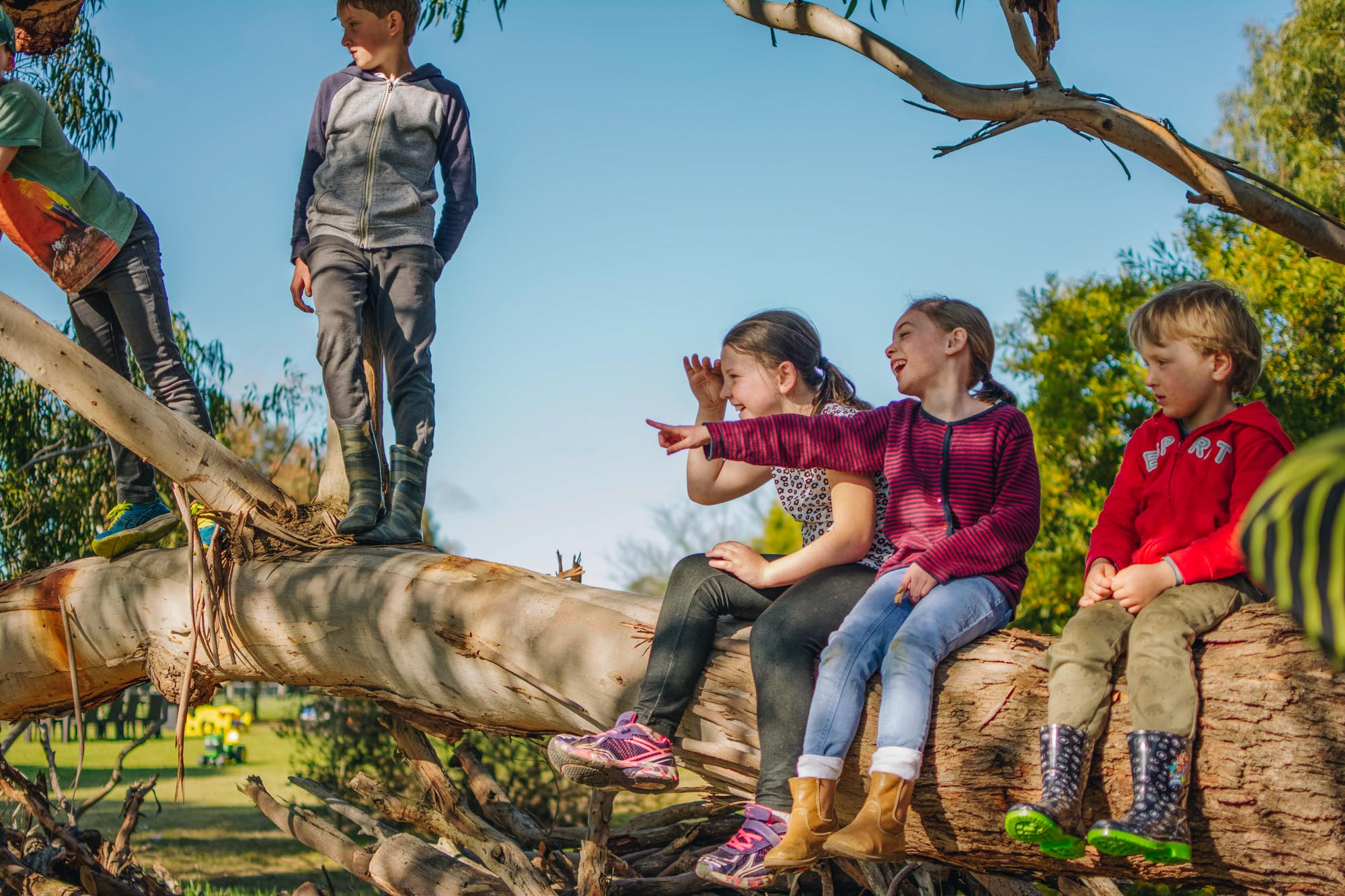 Freshwater Creek Cottages - Kids Farm Tours - Kids Parties - Surf Coast - Torquay - Geelong-21.jpg