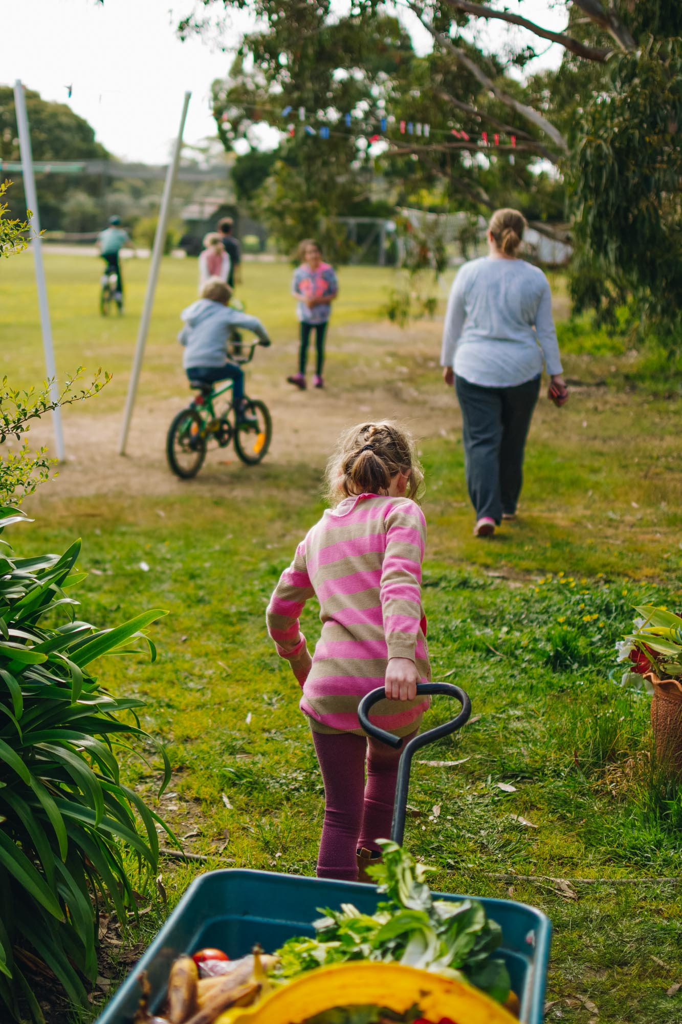 Freshwater Creek Cottages - Kids Farm Tours - Kids Parties - Surf Coast - Torquay - Geelong-121.jpg