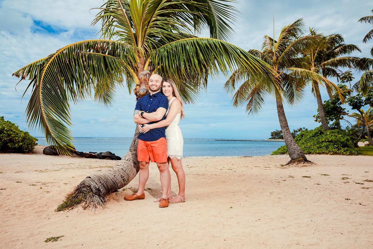 oahu beach palm tree couple love engagement photo