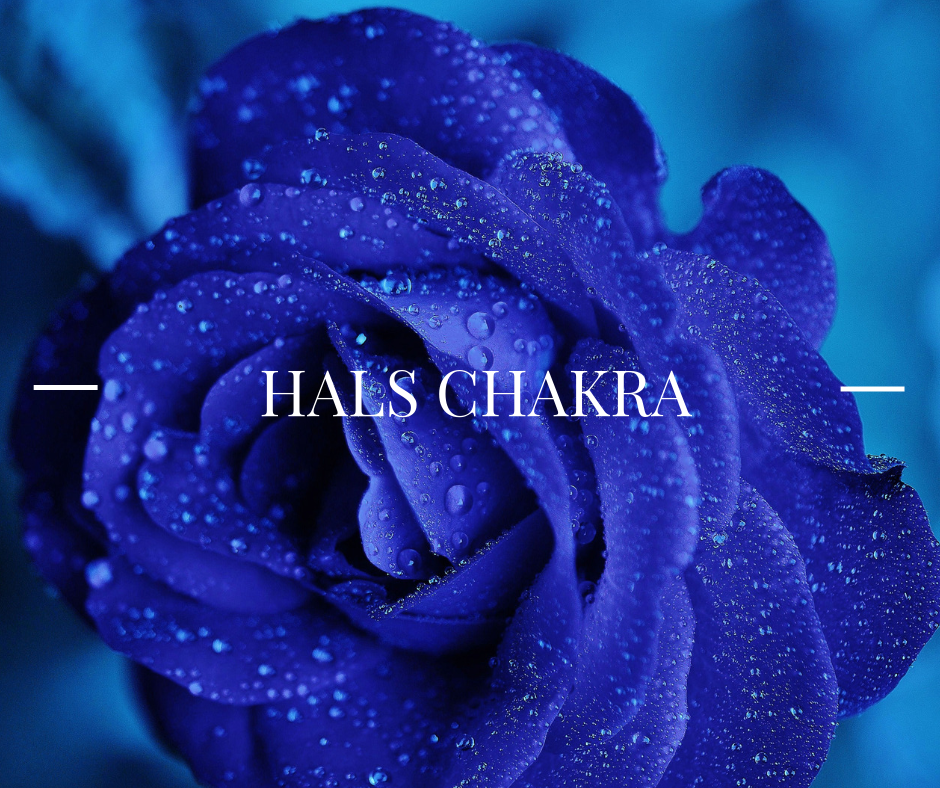 Copy of chakra challenge-5.png