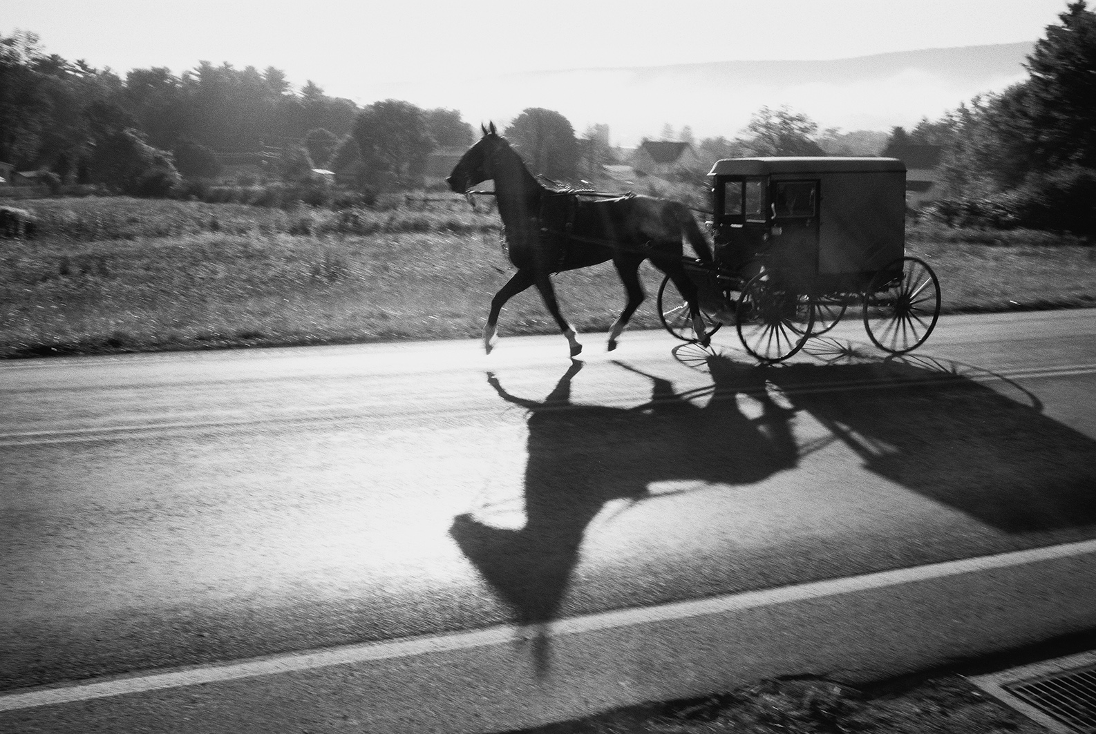 Amish People - Reportage