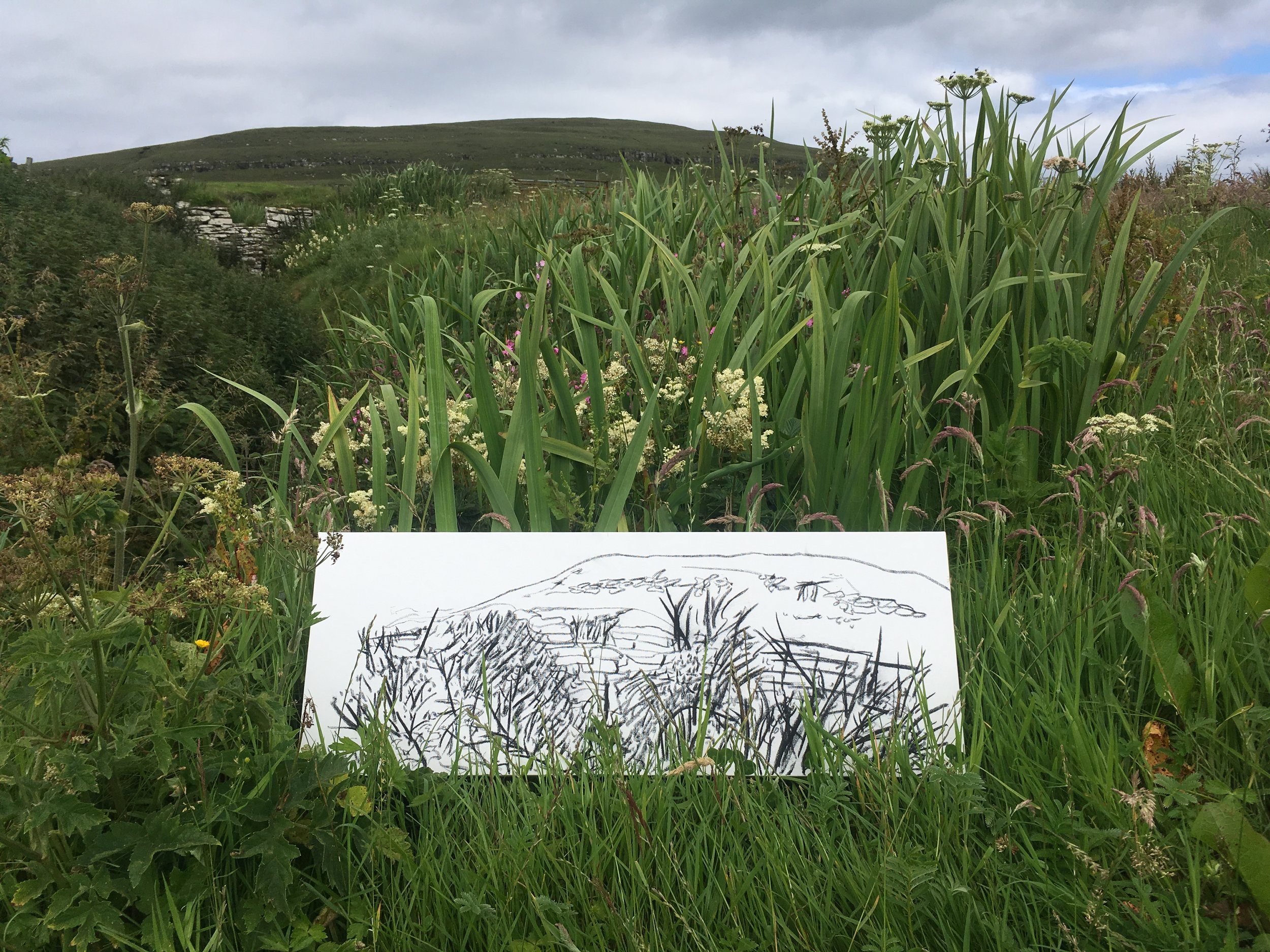 Sketching on canvas Westray July 2019