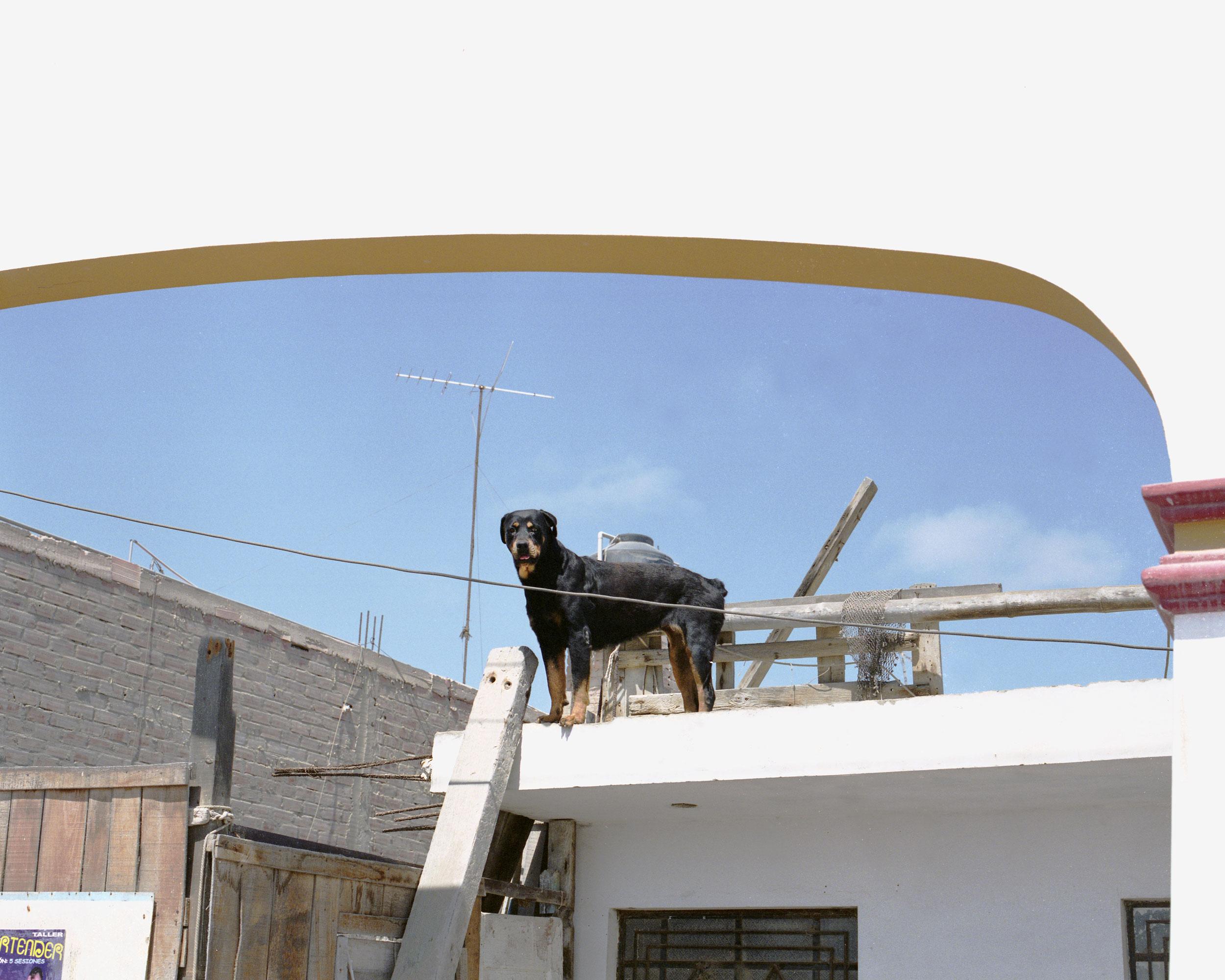 lima026-web.jpg