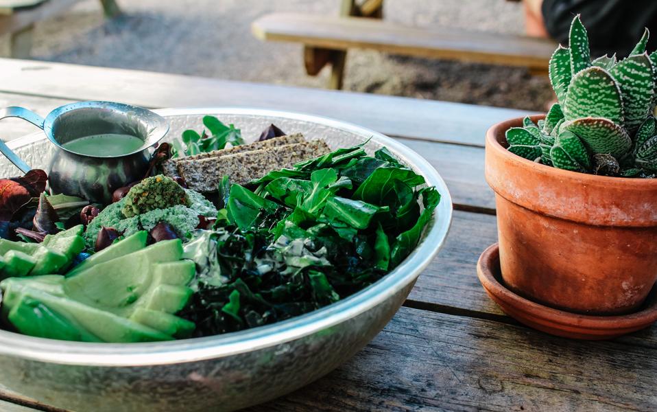 The raw salad at  Hip Vegan .