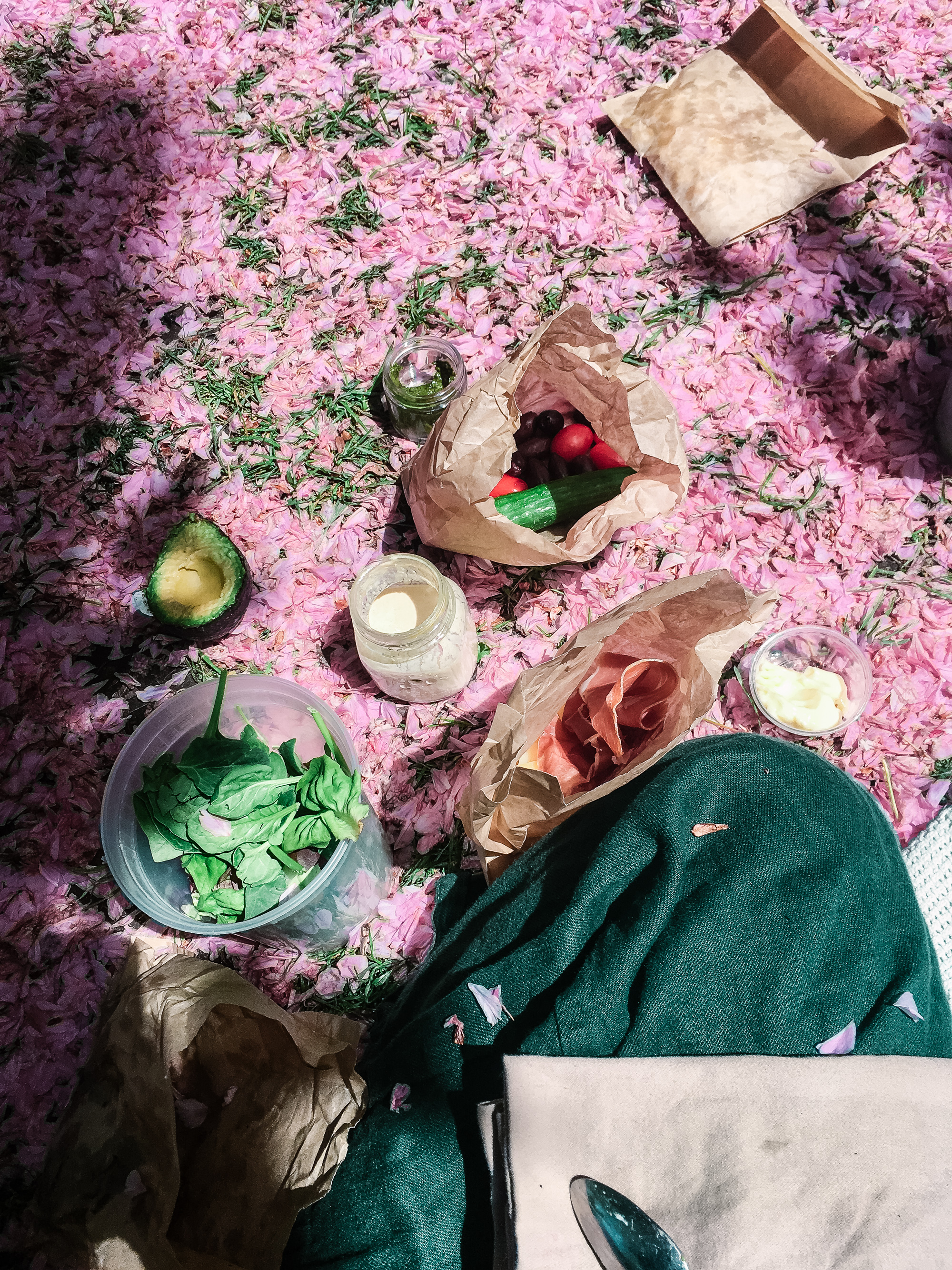 A picnic at the Brooklyn Botanical Gardens. during cherry blossom season. We found out a few minutes after this photo was taken that picnics are not allowed and had to pack up.