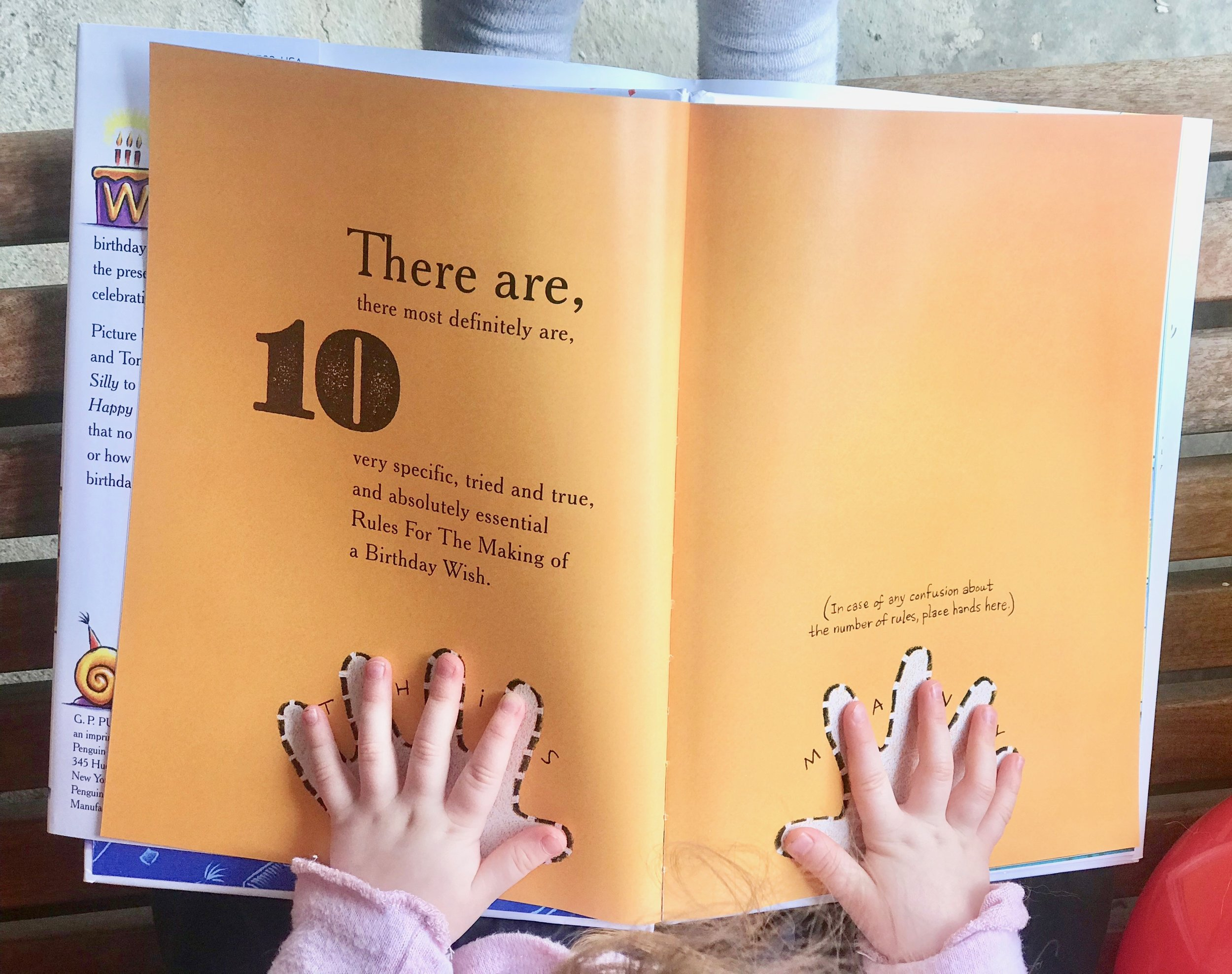 Ten Rules of the Birthday Wish by Beth Ferry and Tom Lichtenheld