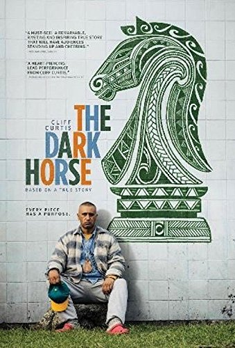 the dark horse the best gifts for chess players.jpg