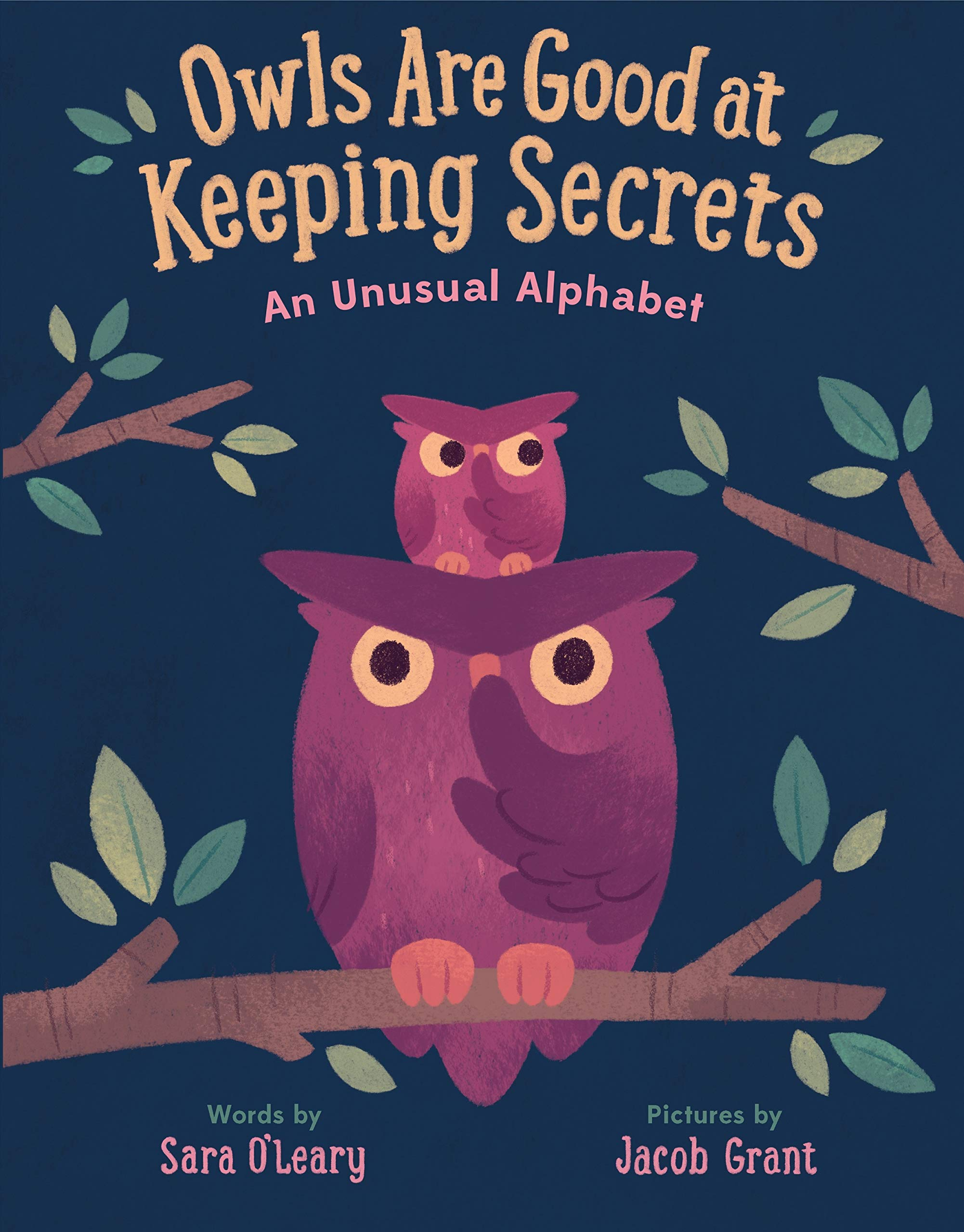 The Best ABC Picture Books - Owls Are Good at Keeping Secrets.jpg