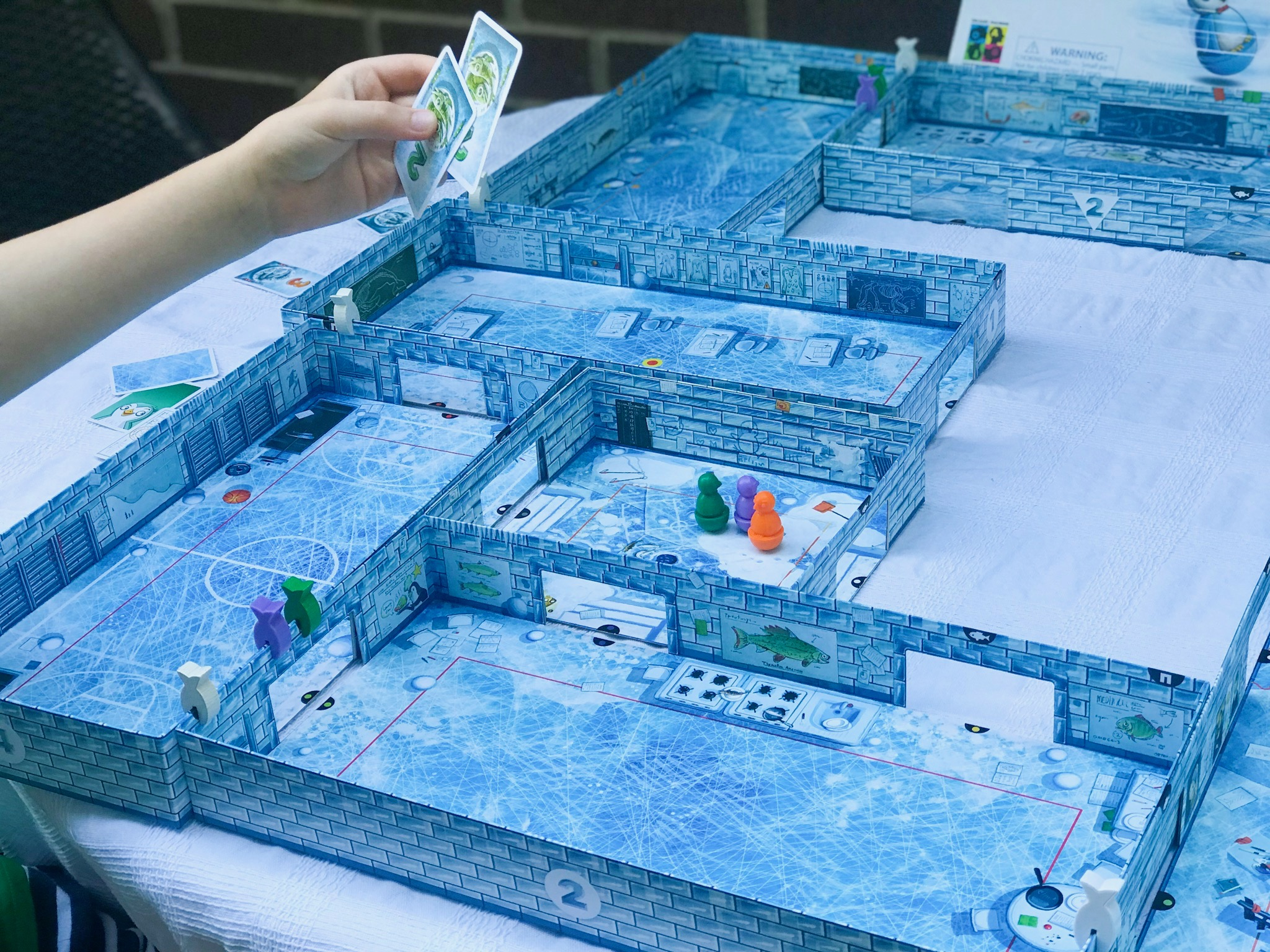 ICECOOL and ICECOOL2 family board game 11.jpeg
