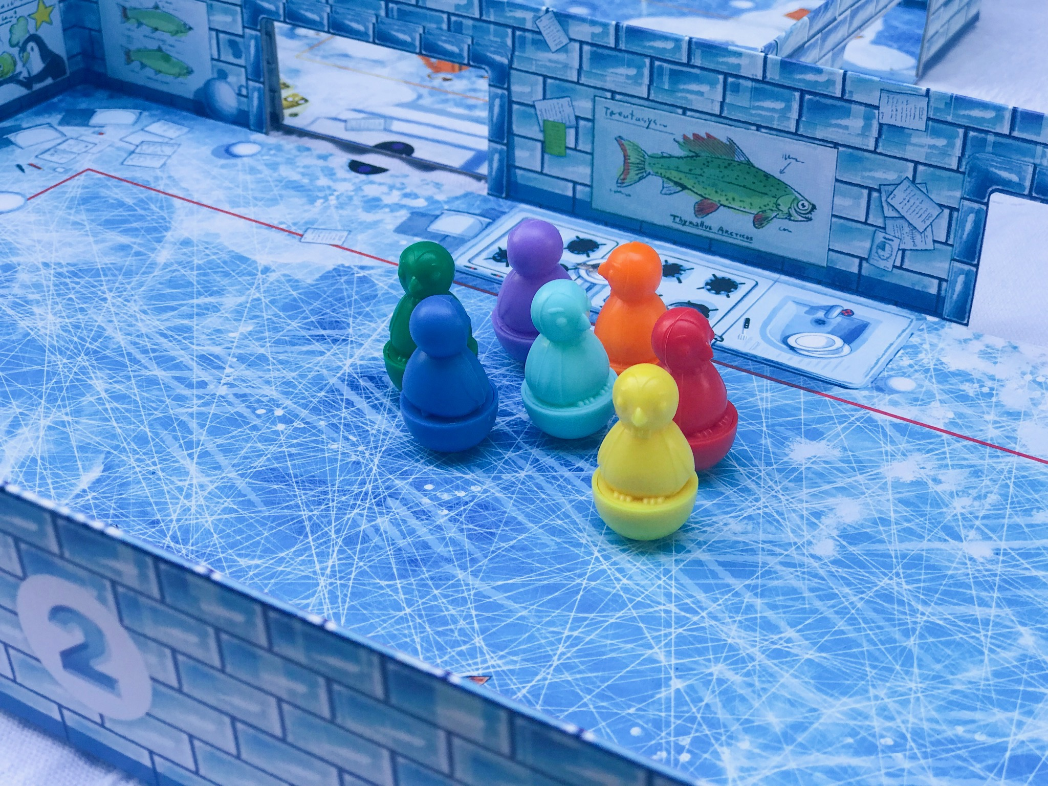 ICECOOL and ICECOOL2 family board game 12.jpeg