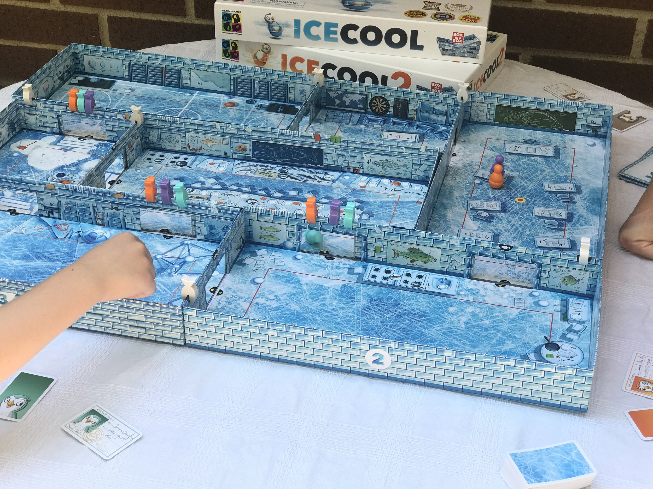ICECOOL and ICECOOL2 family board game 8.jpg
