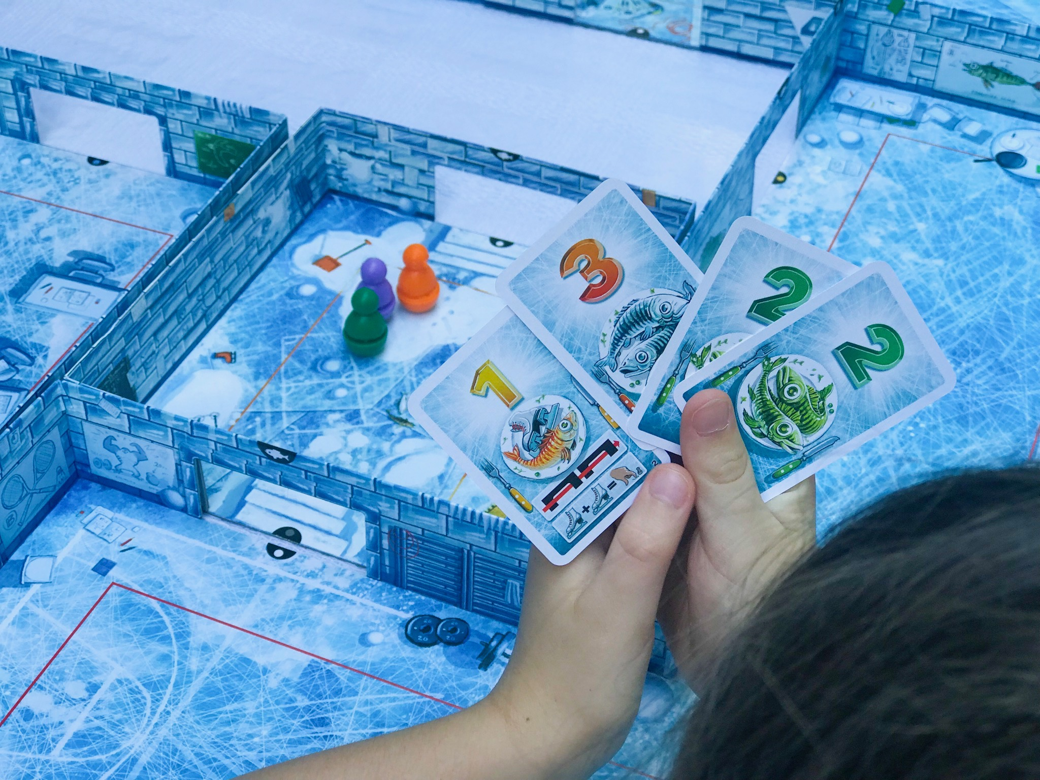 ICECOOL and ICECOOL2 family board game 9.jpeg
