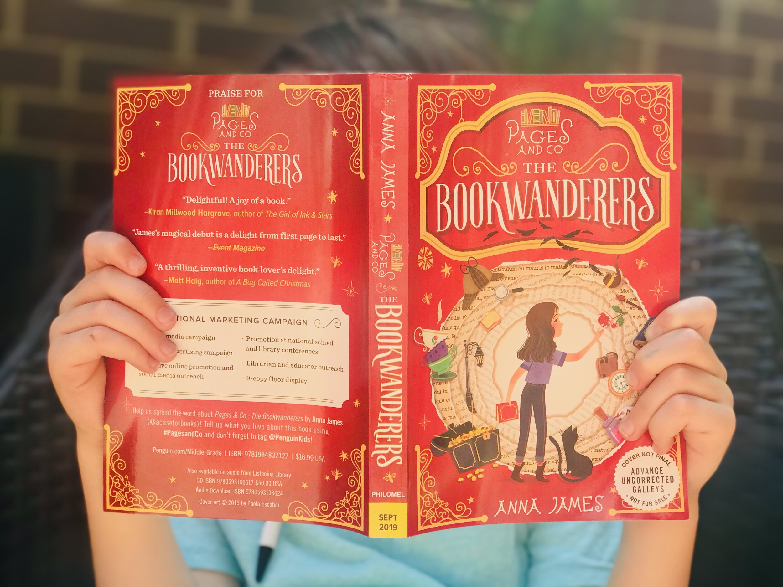 Pages and Co the Bookwanderers cover.jpeg