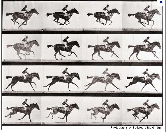 Muybridge Screen shot 2012-08-25 at 9.32.05 AM.png