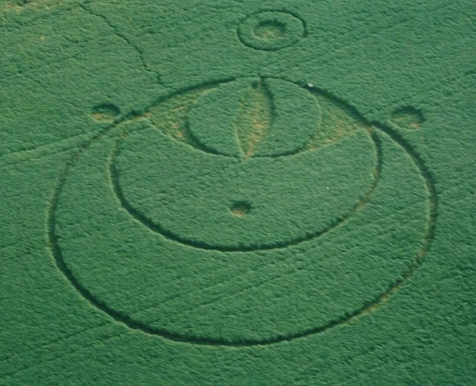 2003 Serpent Mound crop circle (near Peebles, Ohio); field was soybeans.