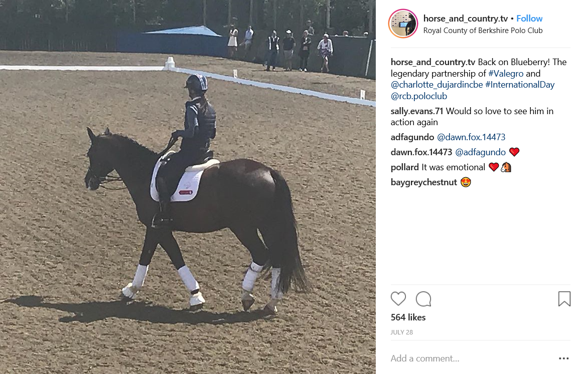 Horse & Country TV IG post 3.PNG