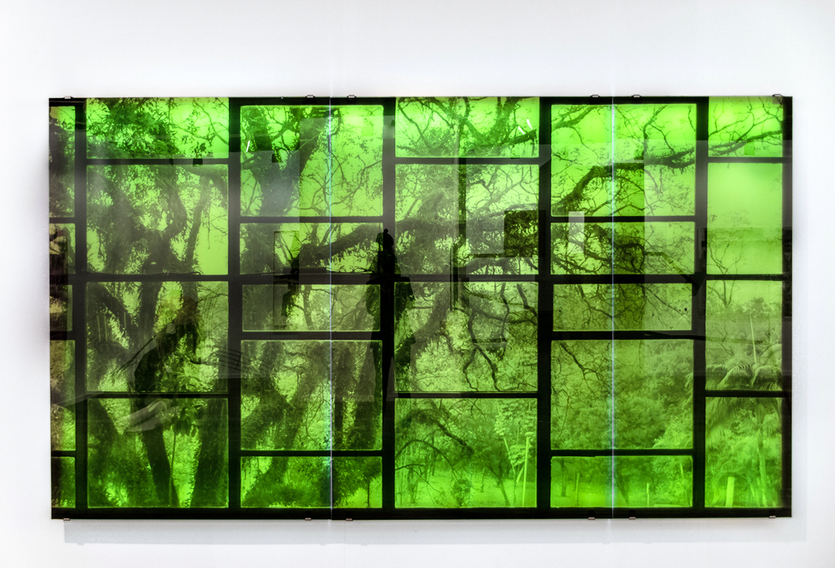 Oscar Niemeyer with Tree , 2016 3-panel silkscreen print on glass with LED lighting overall dimensions: 85 x 151 inches, 216 x 384cm  Edition of 3
