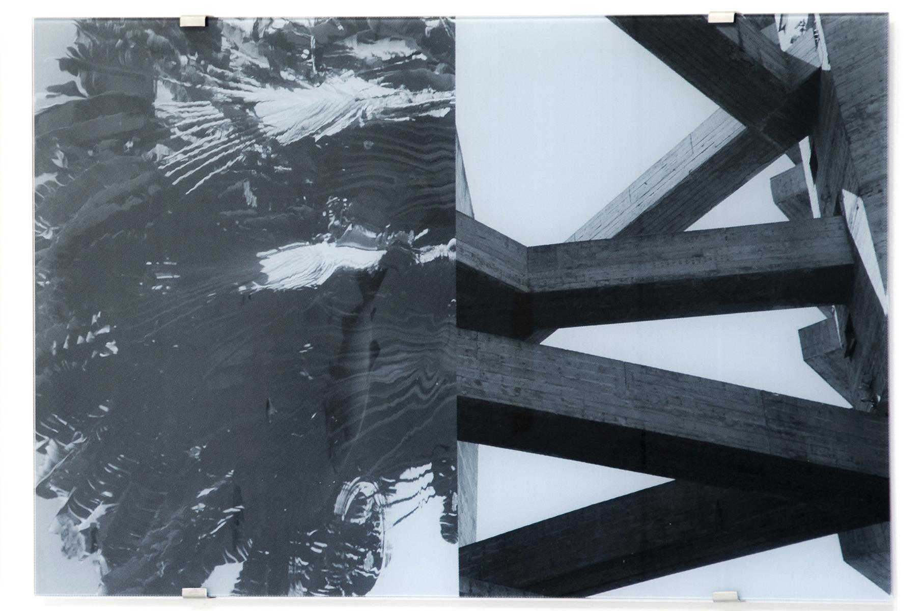 Sesc Pompéia, Musa Troglodytarum, reflection , 2016 silkscreen on glass 27-1/2 x 41-3/8 inches, 70 x 105 cm Edition of 5
