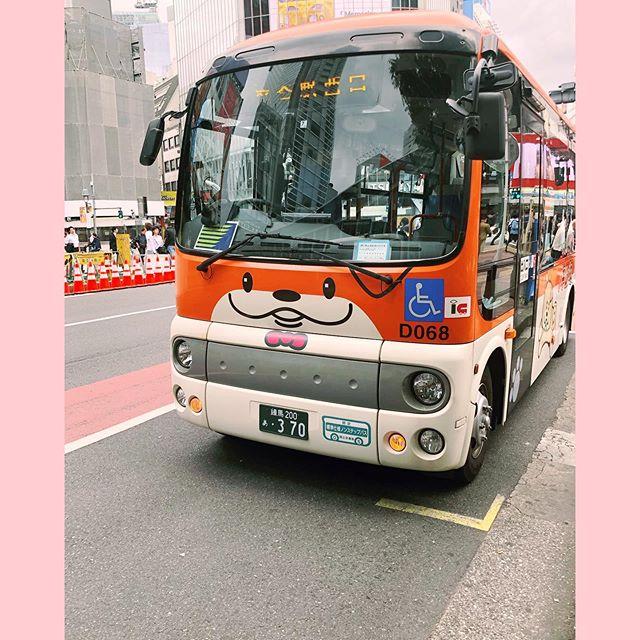 Of course the Shibuya shuttle bus is a shiba inu! 🌸🌸🌸 #kawaiivibes #kawaii #shibuya #tokyo #japantravel