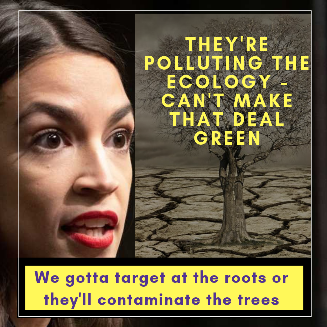 They're Polluting the ecology - can't make tha deal green (1).png