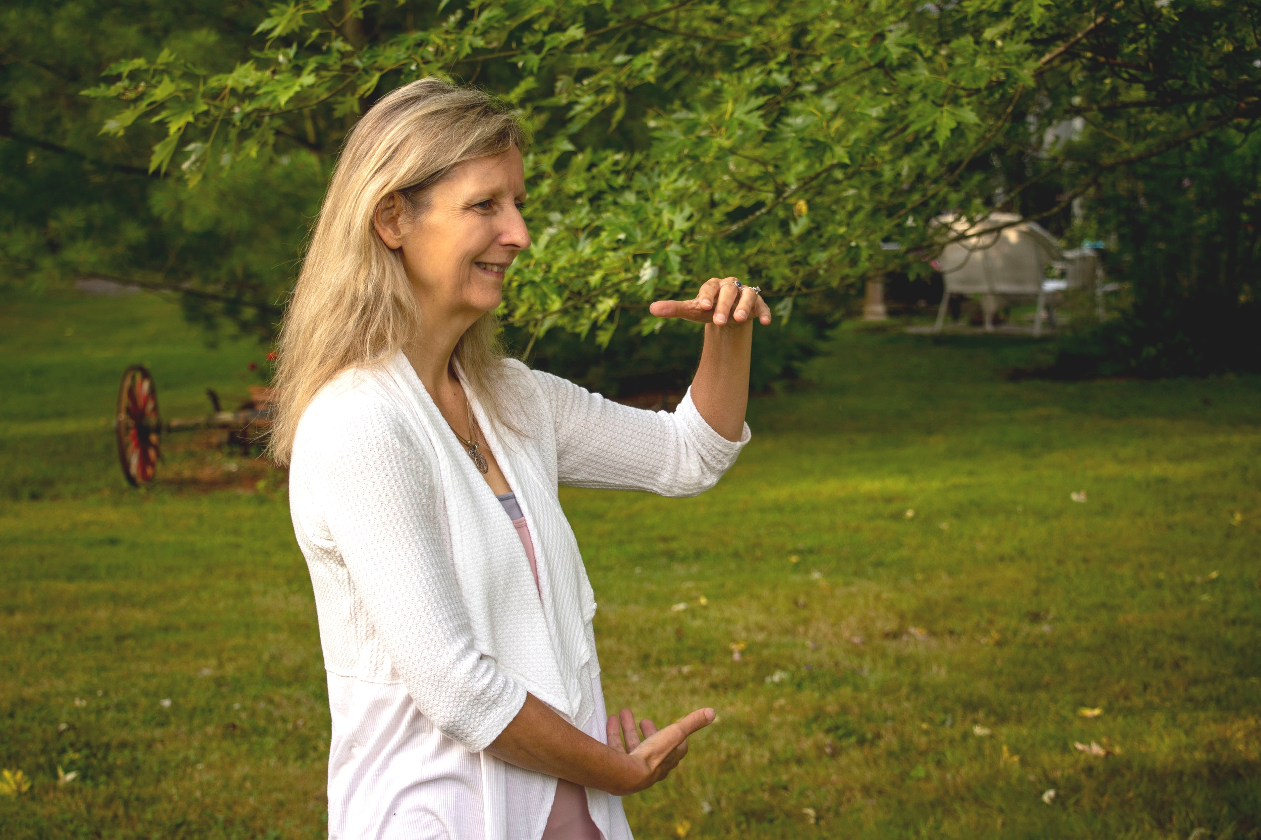 Tai Chi Easy - A beautiful, 7-step, meditative, flowing form based on the Yang Style.