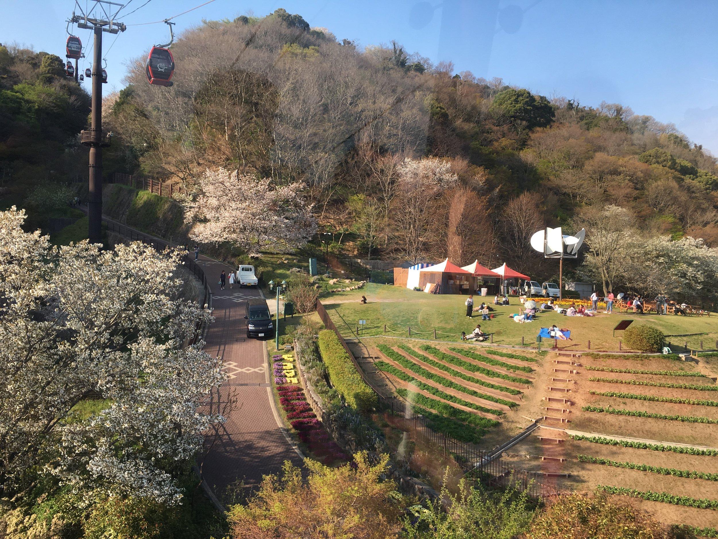 Day 9: Kyoto to Kobe