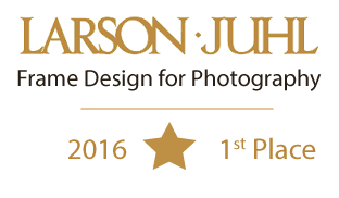 larson-juhl-gold-first-place-Design-Star-Photograpy-Cinda-Accent.png