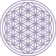 Flower of life.png