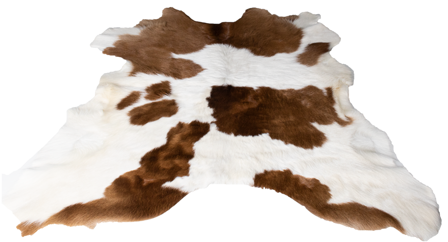 hair-on-calf-4.png