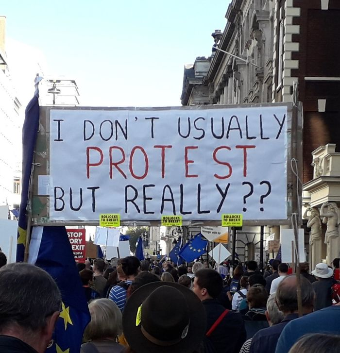 '45 of the funniest signs from the Anti-Brexit march' - boredpanda.  Source.