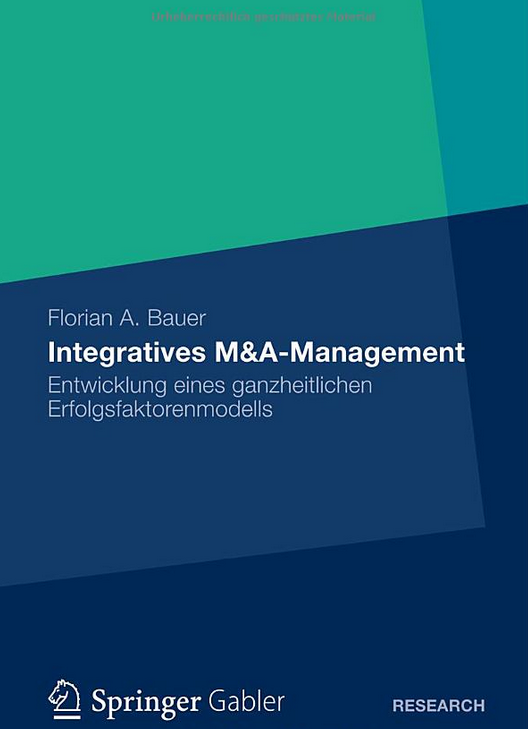 Integratives M&A Management
