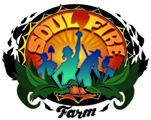 SOULFIRE_FINAL-color-shadow-text-300x238.jpg